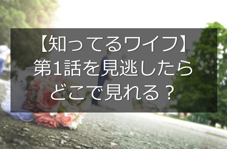 【日本版】ドラマ「知ってるワイフ」第1話を見逃したらどこで見れる?最新話までの無料視聴方法も