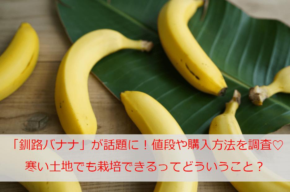 「釧路バナナ」が今話題に!寒い土地でも栽培できるってどういうこと?値段や購入方法なども調査♡