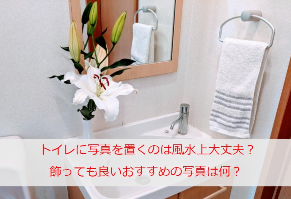 トイレに写真を置くのは風水上大丈夫?飾っても良いおすすめの写真は何?
